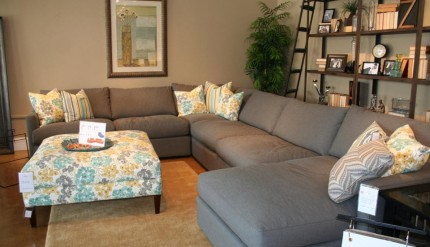 Cool Gray Couch